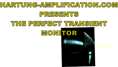 HARTUNG-AMPLIFICATION.COM